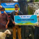 Lazis PJB dan NH Zakatkita Salurkan 80 Ekor Kambing Breeding