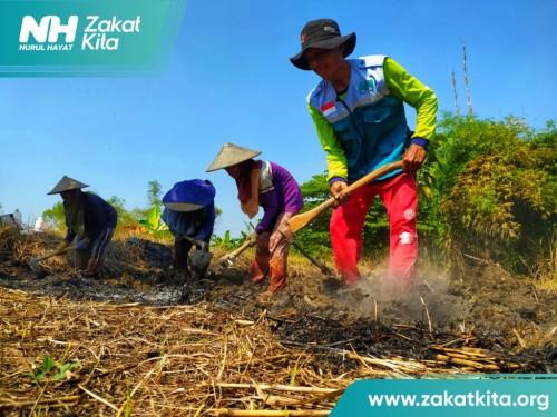 Gandeng Ponpes Al Amin, NH Zakatkita Bangkitkan Ekonomi Pertanian Untuk Warga Dhuafa