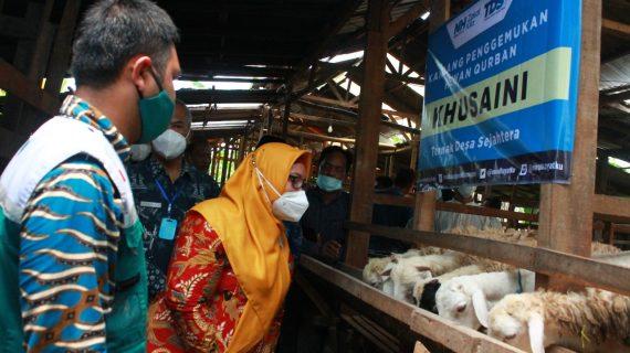 Bersama Wakil Bupati Gresik, NH Zakatkita Salurkan 100 Ekor Kambing Untuk Warga Bungah