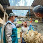 Kebahagiaan Anggota Program Ternak Desa Sejahtera