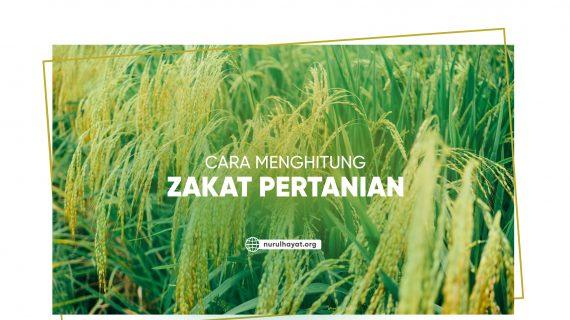 Cara Menghitung Zakat Pertanian